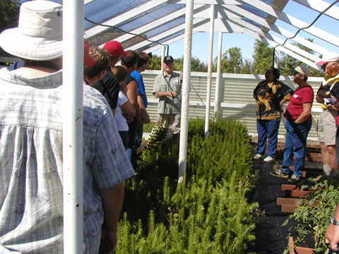 Christmas Tree Growers Field Day